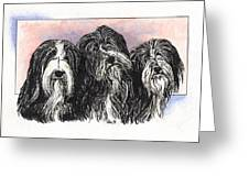 3 Bearded Ladies Greeting Card
