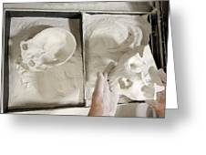 3d Cast Of Hominid Skull Greeting Card