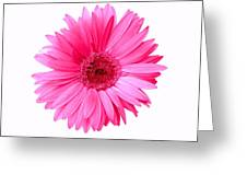 5552c6-005 Greeting Card
