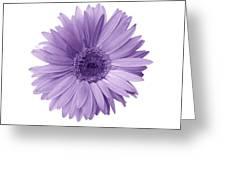 5552c6 Greeting Card