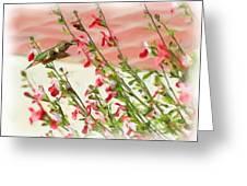 A Garden Delight Greeting Card