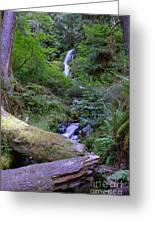 A Small Waterfall Greeting Card