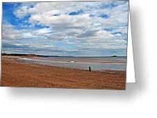 A Walk On The Beach Greeting Card