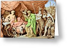 Alexander The Great And His Physician Greeting Card