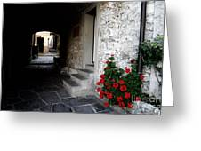 Alley With Arches Greeting Card
