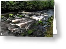 Almond River Greeting Card
