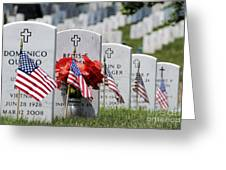 American Flags Placed In The Front Greeting Card