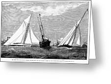Americas Cup, 1887 Greeting Card