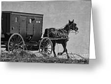Amish Buggy Black And White Greeting Card