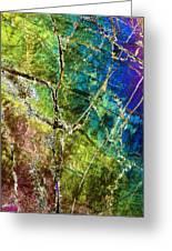 Amphibole Mineral, Light Micrograph Greeting Card