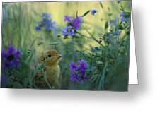 An Attwaters Prairie Chick Surrounded Greeting Card