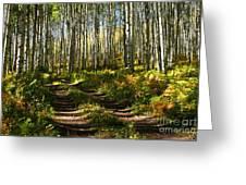 Aspen Dreamland Greeting Card