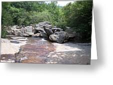 Au Natural Dam Greeting Card