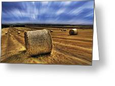 August Field Greeting Card