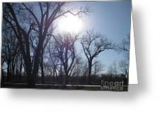 Autumn Afternoon Sun Greeting Card
