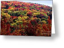 Autumn Along The Highland Scenic Highway Greeting Card