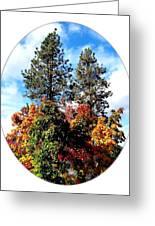 Autumn Beginnings Greeting Card
