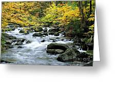 Autumn Stream 3 Greeting Card