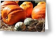 Autumn Study Greeting Card