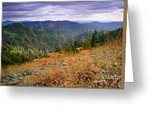 Autumn Whispers Greeting Card