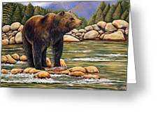 Bear Catch Of The Day Greeting Card