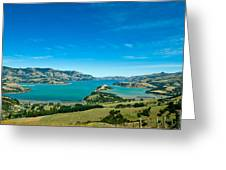 Beautiful Summer Day View Into The Akaroa Harbour Greeting Card