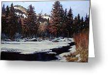 Beaver Creek Greeting Card by W  Scott Fenton