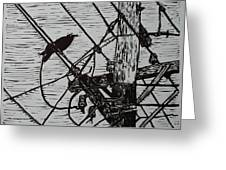 Bird On A Wire Greeting Card by William Cauthern