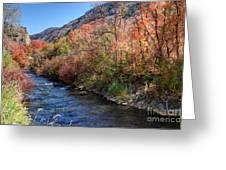 Blacksmith Fork River In The Fall - Utah Greeting Card