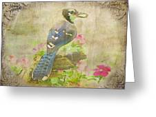 Blue Jay With Texture II Greeting Card