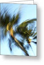 Blurred Palm Trees Greeting Card
