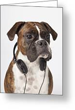 Boxer Dog With Headphones Greeting Card