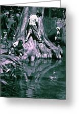 Boys By The River Greeting Card