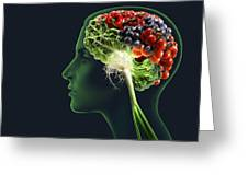 Brain Food, Conceptual Image Greeting Card