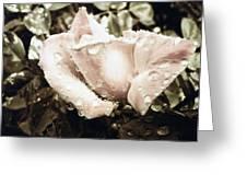 Bring May Flowers Greeting Card