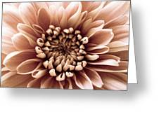 Brown Flower Greeting Card