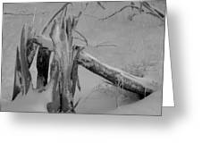 Bw Snowy Stump Greeting Card