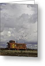 Caboose In A Cotton Field Greeting Card