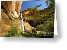 Calf Creek Falls Canyon Greeting Card