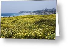 California Wildflowers Greeting Card