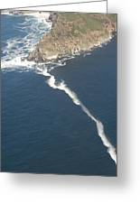 Cape Point, The Dividing Point Greeting Card