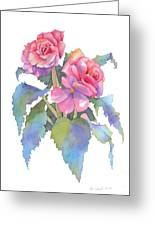 Carmel Begonias Greeting Card