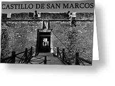 Castillo De San Marcos Greeting Card by David Lee Thompson