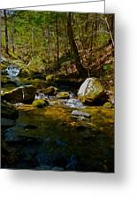 Childs Brook 3 Greeting Card