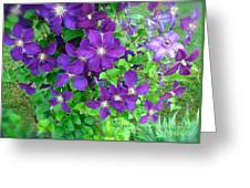 Clematis In Bloom Greeting Card