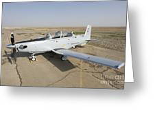 Cob Speicher, Tikrit, Iraq - A T-6 Greeting Card