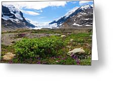Columbia Icefield Greeting Card