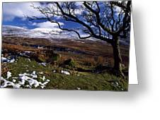 Comeragh Mountains, County Waterford Greeting Card by Richard Cummins