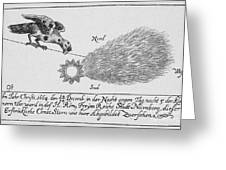 Comet, 1664 Greeting Card