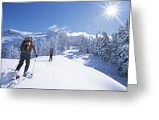 Cross-country Skiers In The Selkirk Greeting Card